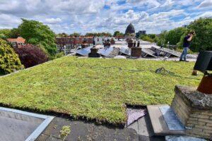 Meer groene daken in Oost