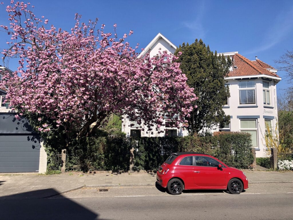 Utrecht Oost